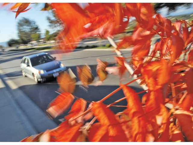 The Santa Clarita Valley shows a flash of fall during a windy afternoon at Soledad Canyon Road near Bouquet Canyon in Saugus on Monday. Temperatures in the SCV are expected to remain in the high-60s low-70s this week, according to the National Weather Service.