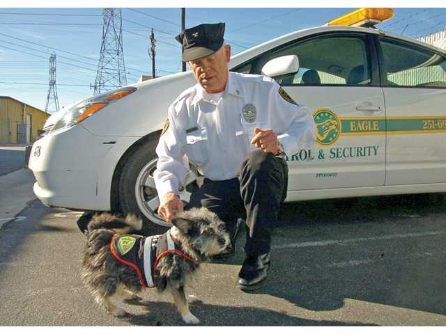 (Right) Roger Combs, general manager of Copper Eagle Patrol & Security, plays with Acacia, a terrier mix who is the company's mascot, in front of one of his company's patrol vehicles in Canyon Country. Acacia is also dressed in uniform.  Private security companies can provide security patrols, guard services, video surveillance, alarm response and other services for homeowners and homeowner associations in the SCV.