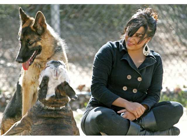 Dara Najera, 26, of Canyon Country, watches her German shepard, Max, left, play with a bulldog in the Central Bark dog park at Central Park in Saugus on Tuesday.