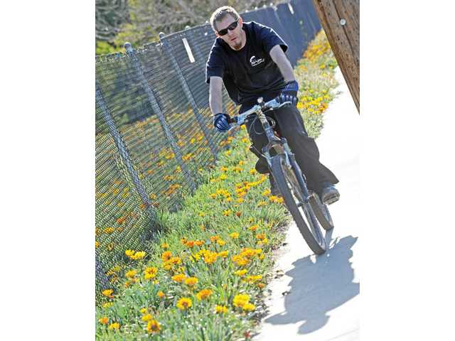 A man bikes on Bouquet Canyon Road near Central Park in Saugus on Tuesday.