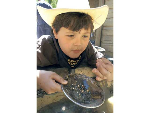 Noah Smith looks for grains of gold as he tries his hand at the Gold Rush Learning Center at the Cowboy Festival last year.