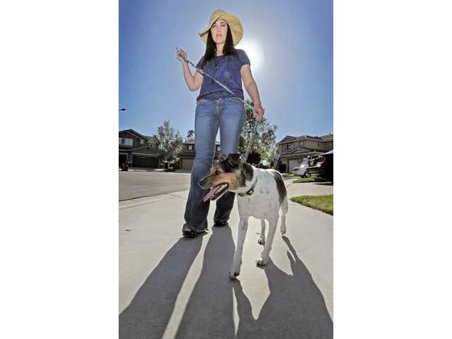 Sheri Clement, of Valencia, walks her dog Bruin. Clement wears a floppy hat, a sun-protection strategy she employed after two bouts with melanoma.