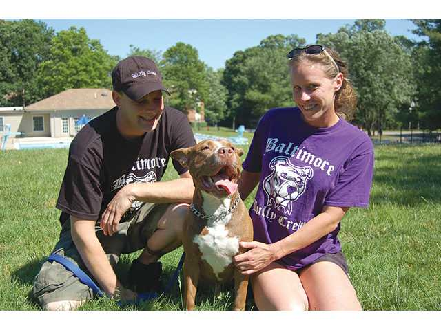 Eric Vocke of Baltimore Bully Crew is a chef by night and crusader by day to save abused pit bulls in Baltimore. Peyton, a former bait dog, was adopted and rehabilitated by Vocke.