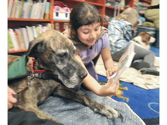 Samantha Ocampo, 7, right, shows pictures from her book to Santa Clarita Therapy Dog, Sparky, a brindle-colored Great Dane.