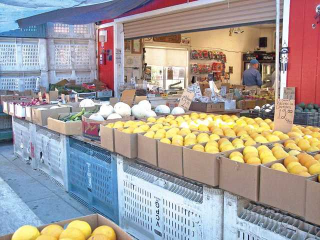Stop at one of the many fruit stands along Highway 126 and stock up on a great variety of in-season fresh fruits and vegetables.