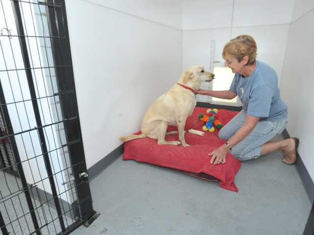 Kennel owner Jill Parnham shares a moment with Labrador Layla at 2nd Home Dog Boarding in Acton. The kennel's profits all go to animal welfare and rescue organizations. It also houses some rescued dogs, such as Layla.