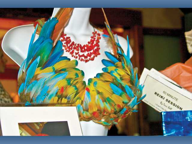 Barbara Ralsten Fine Art donated this spectacular bra decorated with feathers from her scarlet macaw.