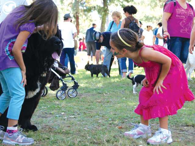 Eva Beck, right, and Mia Vasquez, both 6, play with dog Koda on Sunday at the Bow-Wows & Meows Pet Fair at William S. Hart Park in Newhall.