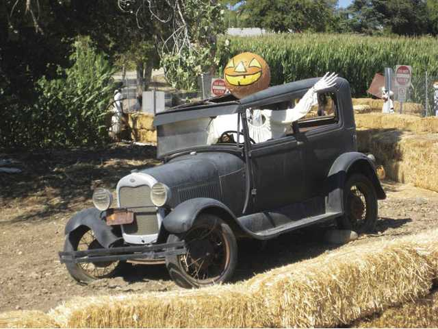 A Halloween character drives a vintage car at Lombardi Ranch.