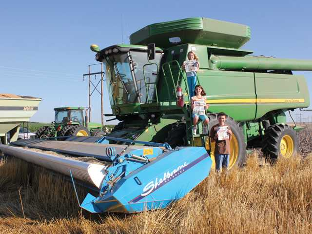 Sara, Rachel and William, children of Bill and Amy Brandenstein, of Canyon Country, are enjoying the harvest at their grandfather's farm in Colorado.