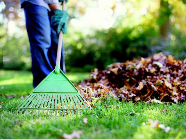 Fall care for heat-damaged yards