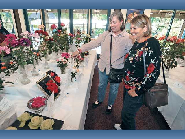 Exhibitors Aprille Curtis, left,  of Burbank and Kathy Strong of San Juan Capistrano discuss some of the 500 variations of roses on display at the 18th annual Rose Show presented by the Santa Clarita Valley Rose Society at Hart Hall at William S. Hart Park in Newhall on Saturday.