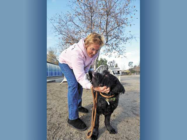 Lisa Lambert spends a moment with Bobo, a black schnauzer mix, at St. Bonnie's Sanctuary in Canyon Country.