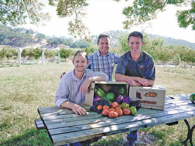 Brothers and owners of Farm Fresh to You, from left, Thaddeus Barsotti, Noah Barnes and Freeman Barsotti sit at the family's fruit and vegetable farm Capay Organic.