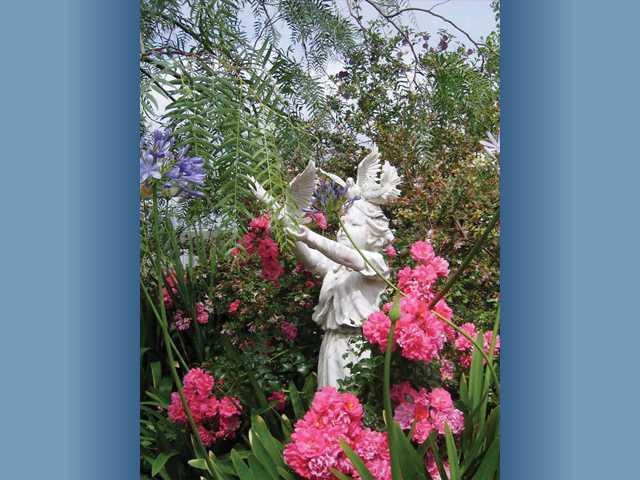 A quiet haven in the Benjamin garden.