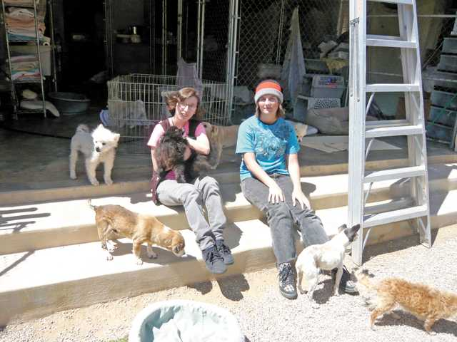 Canyon High School students Winona McCollum and Kristen Rudolph volunteered at the Brittany Foundation no-kill dog rescue in Agua Dulce as part of the school's Career Visions Program Workforce Prep.