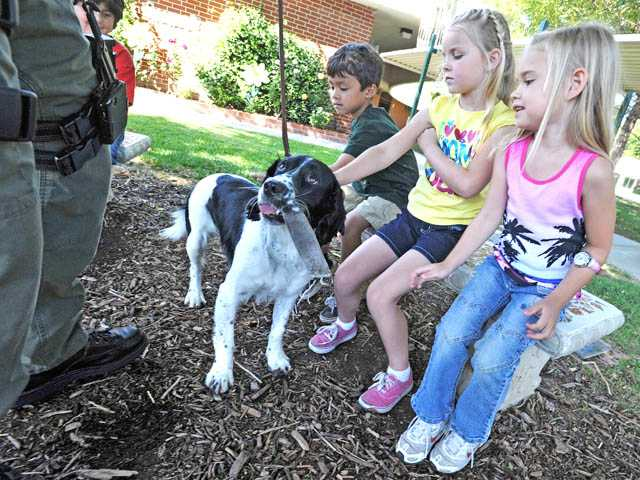 Deputy Jack, an English springer spaniel handled by Detective Jeff Hoslet of the Los Angeles County Sheriff's Department's Narcotics Bureau, visits with kindergartners, from left, David Phan, Rylie Beard and Hailey McCracken, at Santa Clarita Elementary School in Saugus for Community Helpers Day on Thursday.