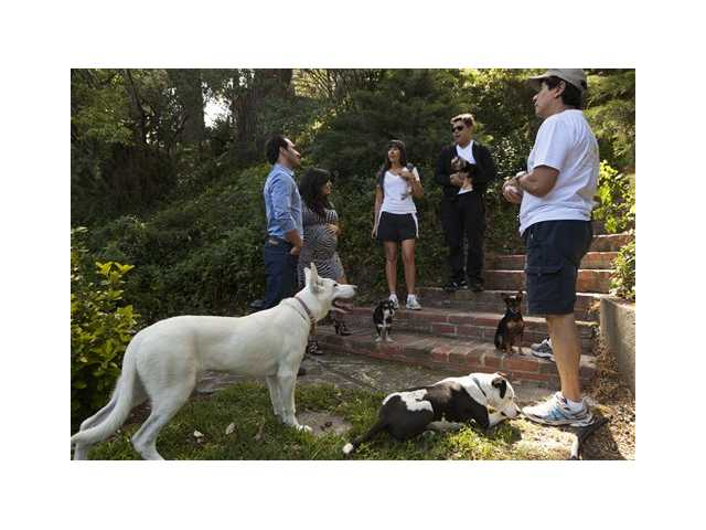 "In this photo taken Friday, entrepreneurs Aaron and Karine Hirschhorn, far left, interview with ""Paw Hills"" pet resort owners, the Sorrentini family right, at their home in Woodland Hills area of Los Angeles. Dog Vacay brings together responsible dog lovers with casual and professional dog sitters to provide an affordable experience for pets."
