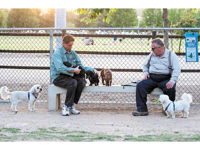 John O'Hare, of Valencia, pets dachsunds Heidi, Mitzi, Buddy and Oscar as Brownie, far left, Mark Price, of Canyon Country, and Frozen, a Chesly terrier, look on.