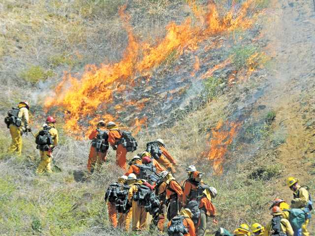 Firefighters and hand crews approach a controlled burn, creeping up a hillside during a training drill at Pitchess Detention Center in Castaic on Thursday.