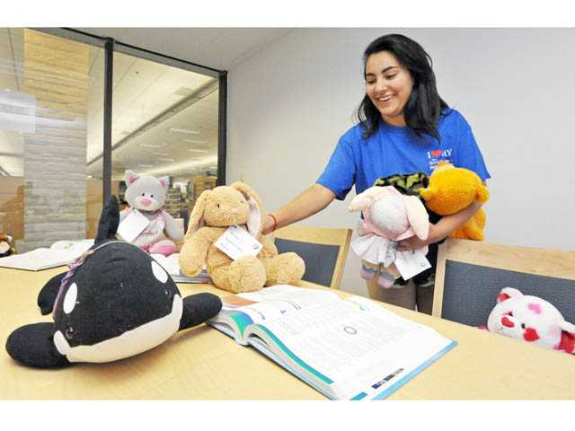 "Volunteer Helary Yakub, 16, arranges stuffed animals to stage a ""study session"" in a study room at the Valencia Library on Friday."