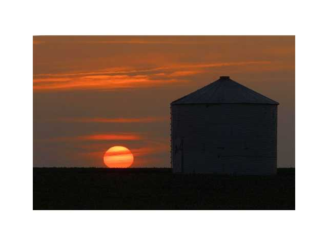 The sun sets in Pleasant Plains, Ill. on Thursday. Corn and soybean crops are struggling under dry conditions and a record breaking heat wave that is over most of the country.