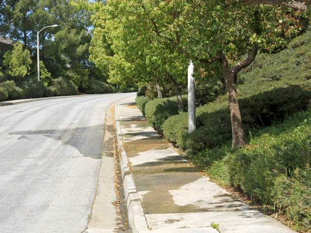 This photo shows two problems with the irrigation system watering these shrubs and trees. First, as you can see in the street, one or more of the sprinklers is missing the plants and watering the asphalt. Second, as you can see from the sidewalk, much of the water provided is running off, over the sidewalk and into the gutter.