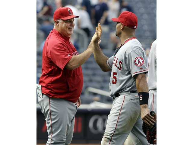 Los Angeles Angels manager Mike Scioscia, left, congratulates Albert Pujols after the Angels defeated the New York Yankees on Sunday in New York.