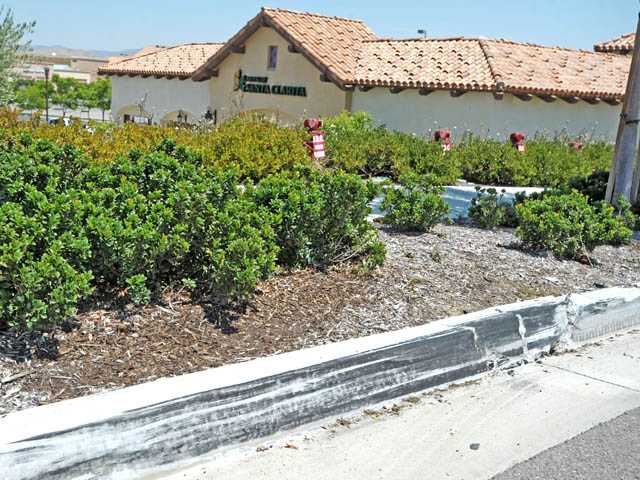 A tire mark is seen on the curb outside the Bank of Santa Clarita's Canyon Country branch on Monday.