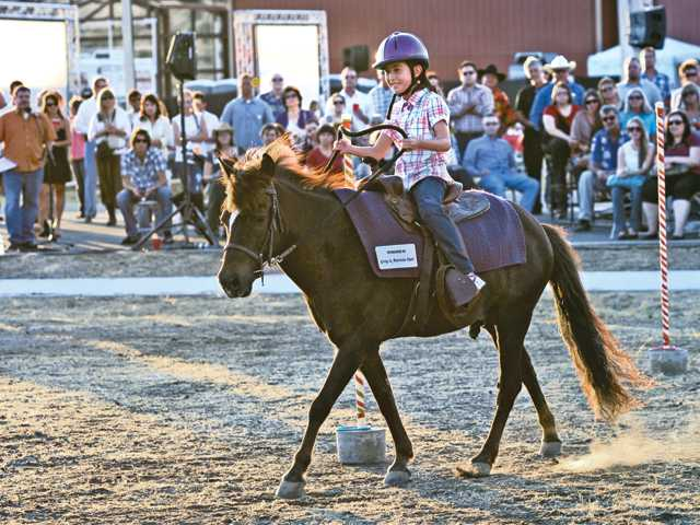 Carousel Ranch will host the 16th annual Dinner, Auction and Children's Demonstration on Aug. 25.