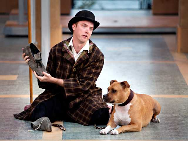 "In this undated photo provided by the Lake Tahoe Shakespeare Festival, Kevin Crouch, as Launce, performs with a deaf pit bull named Michael, as Crab, in the festival's production of ""Two Gentlemen of Verona."""