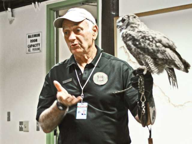 Volunteer Roger McClure displays a great horned owl at the Placerita Canyon Nature Center.