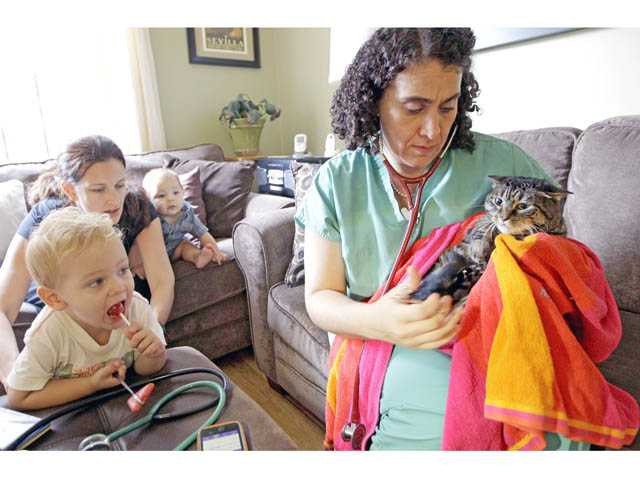 In this Aug. 9 photo,  veterinarian Dr. Elisabetta Coletti, right, tends to the family cat  as Leo, left, Andre, and their mother, Carrie Dirks Amodeo, watch during a house call at their home in New York.