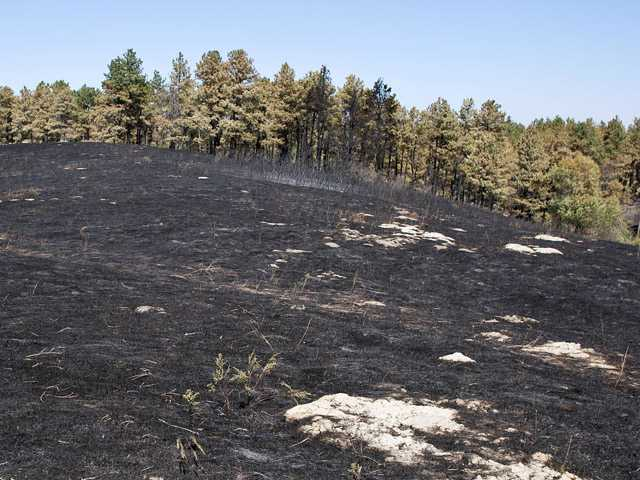Neb., SD wildfires grow with help of strong wind
