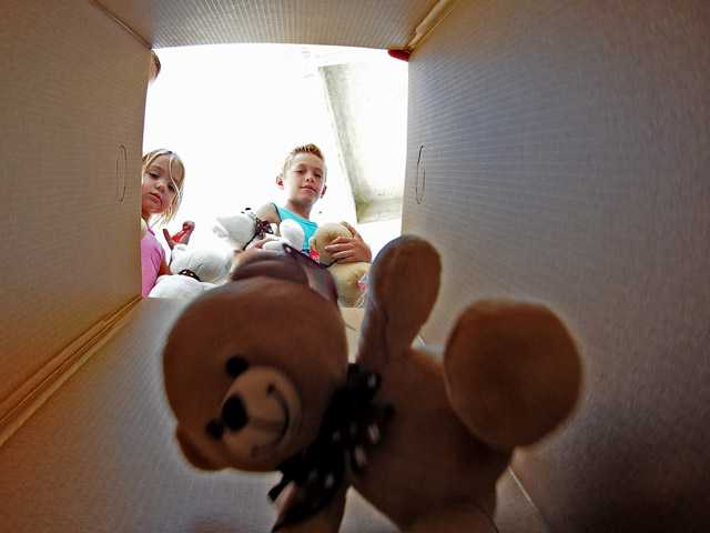 Teddy bears are placed in a box at Henry Mayo Newhall Memorial Hospital's teddy bear drive Sunday.