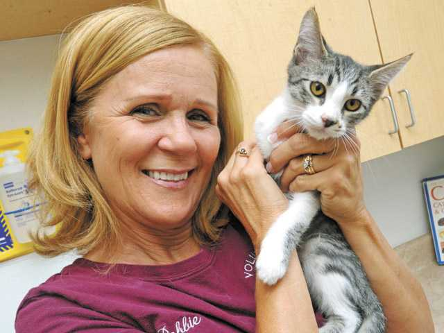 Volunteer Debbie Rosato, veteran volunteer who specializes in cats, with Clark, an altered male, grey tabby and white, Domestic Shorthaired Mix, at the Castaic Animal Shelter.