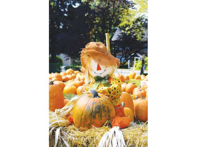 It's time to decorate for Halloween. Ghosts, goblins, graveyard and scarecrows are the norm, but also consider a few more sophisticated decorating themes for the season.