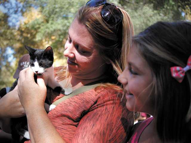 "Marcy Marder and Mallory Marder, 11, of Valencia look to adopt a kitten at the 12th Annual Bow-wows & Meows Pet Fair at William S. Hart Park in Newhall on Sunday. ""I'll name her Oreo,"" said Mallory Marder."