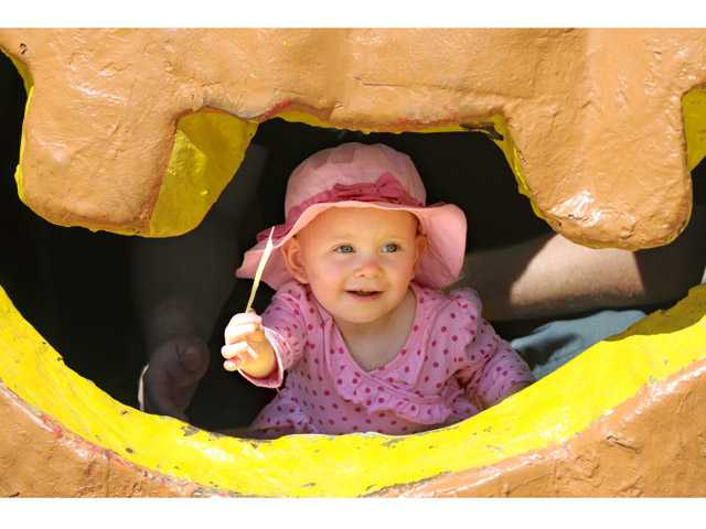 Madison Jones, 16 months, finds a piece of straw inside the giant jack-o'-lantern at Lombardi Ranch in Saugus on Monday. (Jonathan Pobre/The Signal)