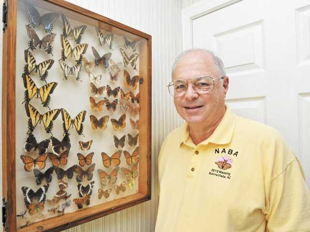 Dr. Paul Levine with a display of butterflies that he collected as a teenager.