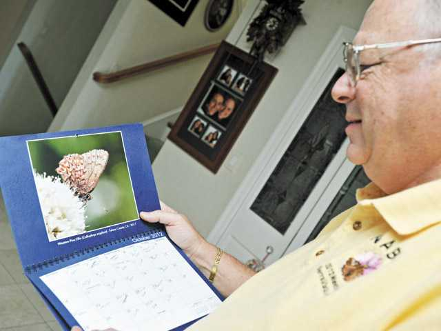 Levine displays his photo of a Western Pine Elfin butterfly in a wall calendar in his Newhall home.