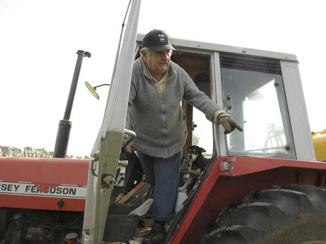 Uruguay's President Jose Mujica, 74, stands in a tractor on his flower farm on the outskirts of Montevideo, Uruguay, Sunday.