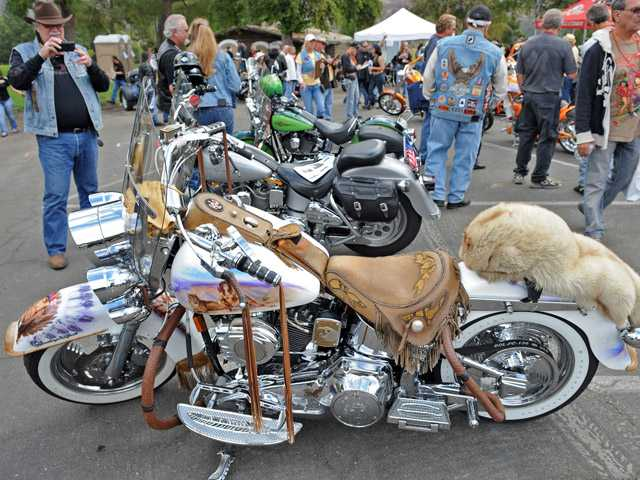 A custom motorcycle is seen on display. (Jayne Kamin-Oncea/For The Signal)