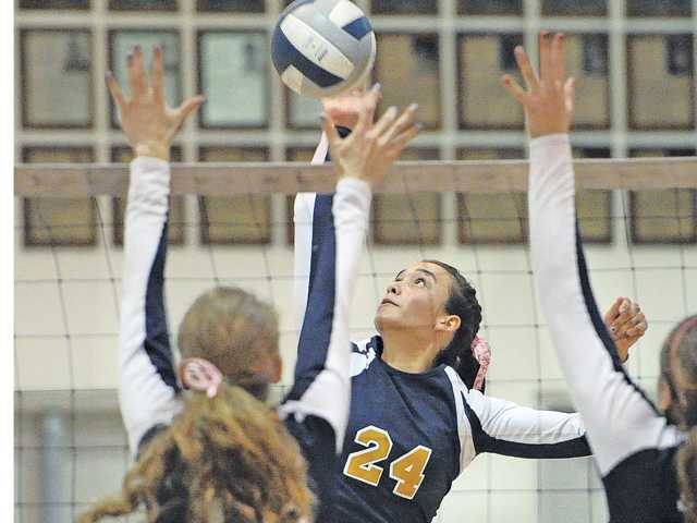 Foothill volleyball: 'Cats have their options