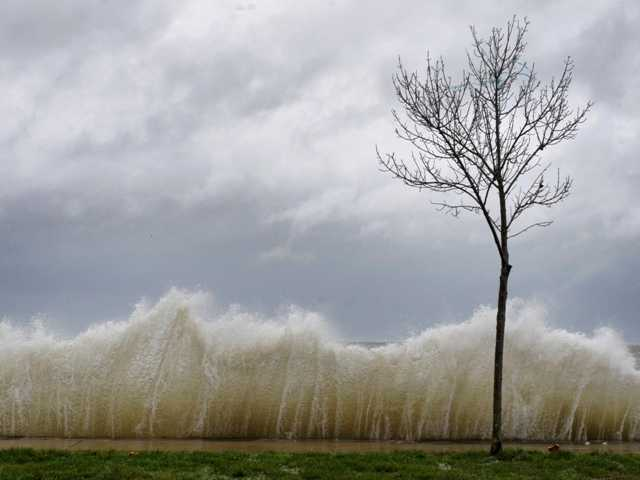 Storm surge hits a small tree as winds from Hurricane Sandy reach Seaside Park in Bridgeport, Conn. Water from Long Island Sound spilled into roadways and towns along the shoreline.