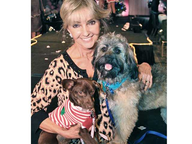 Mardi Rivetti with rescued dogs Oscar and Dusty.
