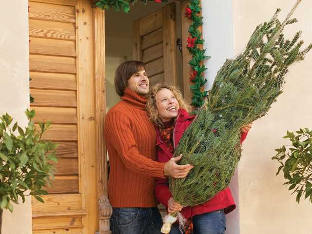Tips for a natural Christmas tree