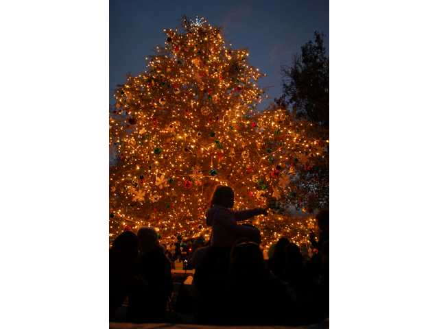 Families gather around a huge tree at the Henry Mayo Newhall Memorial Hospital at sundown, just as the white decorative lights were turned on Sunday.