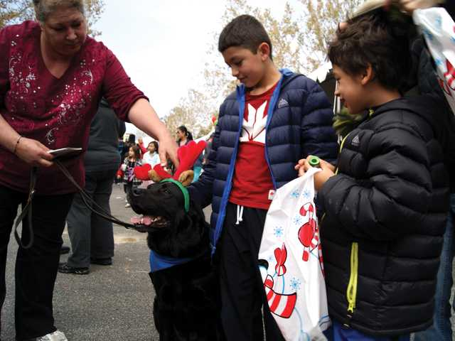 """Dogs specially trained to be """"therapy dogs"""" for patients at Henry Mayo nosed their way through the shifting cluster of families moving from tent to tent."""