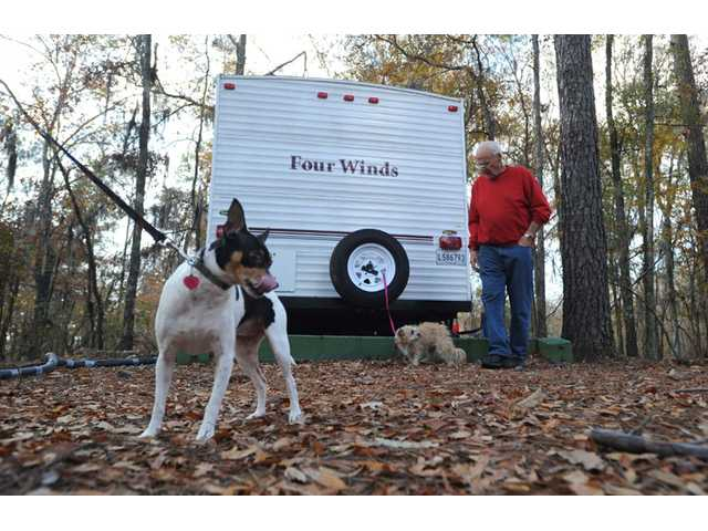 Frank Peetz stands near Sassy and Precious while camping at Lake Bistineau State Park Saturday.
